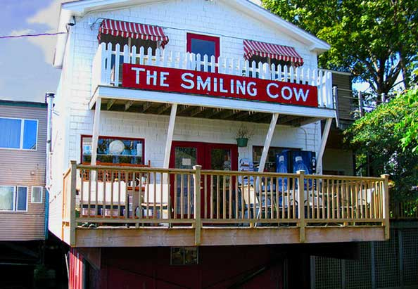 Smiling Cow, Camden Maine